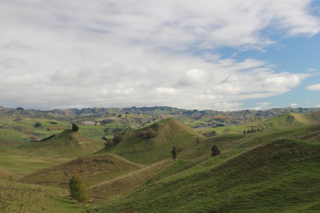 Welli et Tongariro (6)