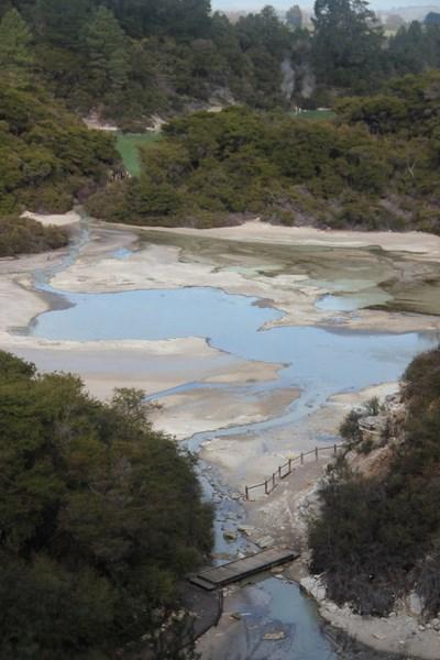 Rotorua la maorie (5)